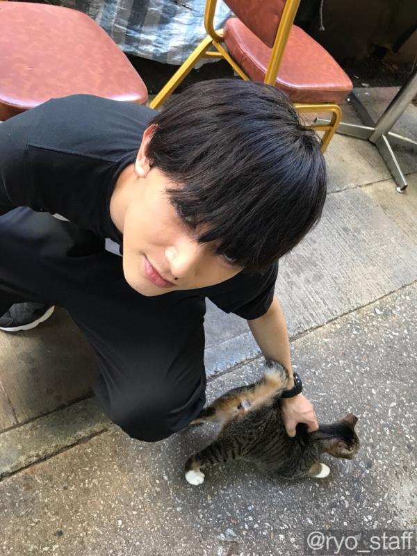 香港主題戀愛故事!秋季日劇《恋する香港》小池榮子、吉澤亮主演