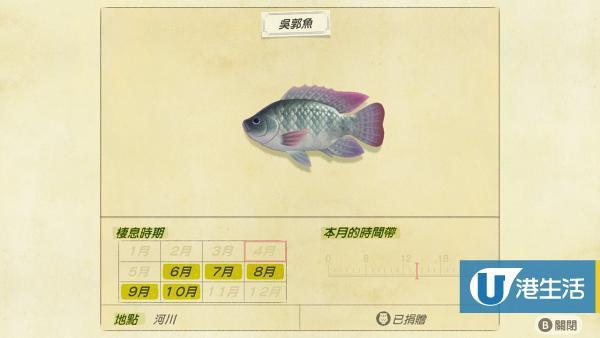 南半球 7月 魚