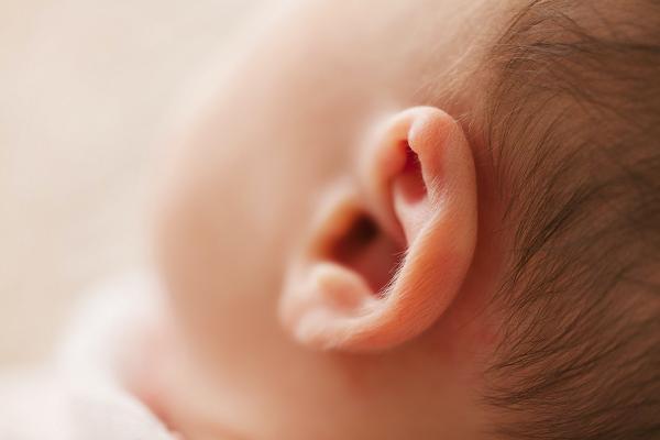 画像 耳垢