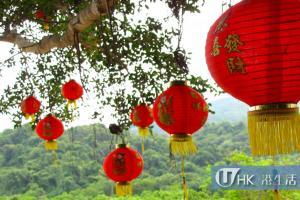 荔枝窩村的大榕樹掛滿燈籠