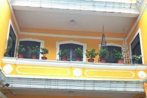 瘋堂斜巷的「婆仔屋」內有定期展覽