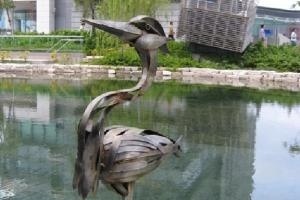 落入凡間的是外太空小鳥, 停泊於科學園湖心。