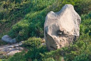 人頭石,這個名就最貼切。