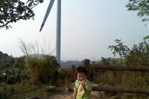 南丫風采發電站