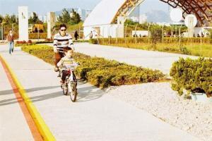 閒日也有一家大小前來踏單車,享受微風撲面的寫意。