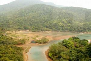 大壩上可俯瞰整個大潭灣紅樹林。
