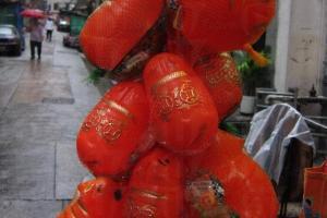 大小不一的豬仔錢罌幾乎絕迹香港,現售 $20 起,價格視乎大小而定。