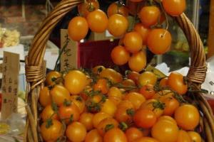 台灣黃金茄味道甘秀爽口。