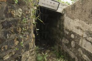 炮台荒廢多年,四周長滿雜草地面鋪著碎石,需小心行走。