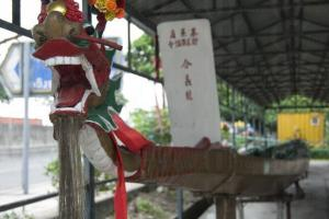 這條合義龍是村中婆婆推介,見證了村民的半世紀情誼。
