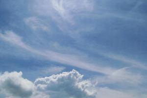 藍天、白雲、牛牛,真的可與台灣清境相媲美。