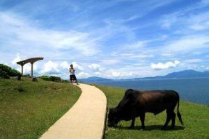 遨遊國境之東 塔門草原與牛同行