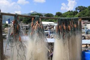 漁村一隅掛著漁網,更有不少居民生曬自家咸魚,自給自足。