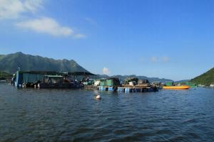 馬屎洲的左邊可遠望八仙嶺,亦有不少漁排,又是攝影者的一大拍攝點。