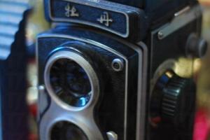 這個絕版牡丹相機不過數百元,即使不用來拍照也可當作擺設。