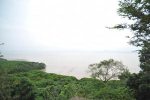 站在觀鳥軒望向深圳方向,可眺望米埔后海灣「拉姆薩爾濕地」。