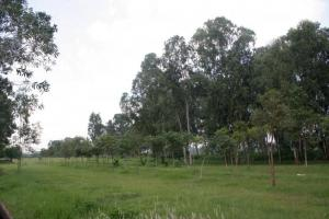 光是看到廣闊的草地已教人心曠神怡。