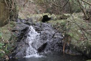 水邊的深色部分最為濕滑,大家一定要小心行走。
