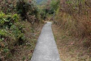 自然歷史徑路面維修妥善,路段亦大致平坦,很適合一家大細同遊。