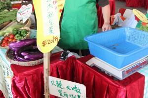 新鮮粟米「又靚、又嫩」,又怎可能不被它吸引?