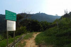 在寶峰徑沿梯級走到寶琳閣後,便見此指示牌,穿過這草地後便展開一段崎嶇的石級旅程。