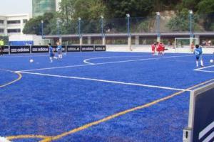 車路士外號藍戰士,訓練場當然要採用藍色草地。