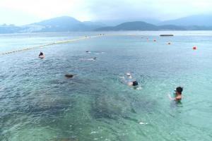 不少泳客自備工具在此浮潛,聽說這裏可看到蟹及海膽等海洋生物。(Shecky 攝)