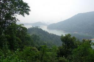 環塘路徑看到的水塘景觀
