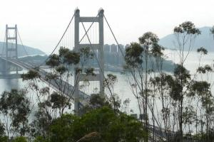 青衣自然徑是賞青碼橋的最佳地方