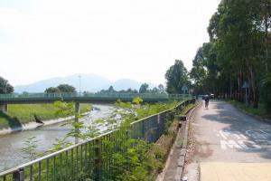河畔道路甚寬闊,適合騎單遊。