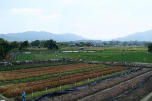 塱原濕地是一片大平原,適合耕種。
