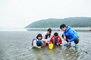 簡單的沙灘玩具已經可以挖泥摸蜆