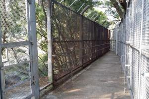 鐵絲網閘門長期打開,配水庫草地就在裡面。