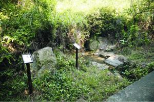 離營地最近的水源,步行約10分鐘到。