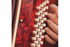 學手風琴必記:手風琴的右邊是一般琴鍵,左邊則是和弦的按鈕,其中凹下去的一顆就是C。