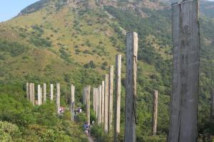 踏在心經簡林小徑上,可以望見對面山巒一片翠綠