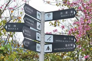 文化旅館 . 翠雅山房共有五座旅舍,分別是琴、棋、詩、書、 畫( A 至 E 座),每座旅舍入口都有代表指示柱,方便辨認。