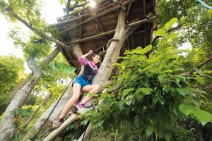 「樹屋田莊」的地標樹屋約三層高