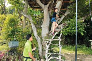 有專人在旁教路攀樹技巧