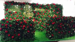 走進玫瑰園