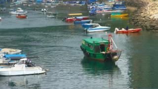 在橋上觀賞碼頭船隻