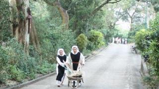 會士均追隨會規,在修院中過著隱修的生活。