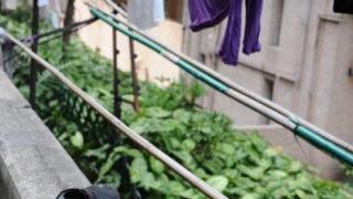 晾衫竹、蜿蜓彎曲的梯間呈現了 60 年代的草根生活。