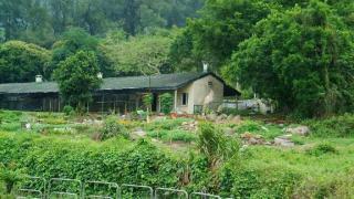 雷公田村的入口與軍營為鄰,因此才可造就了遊人可自出自入的情況。