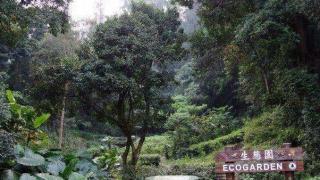 生態園經過園丁的悉心照料後,頓變為一個鳥語花香的天堂。