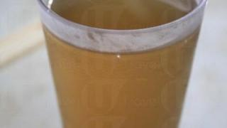 菊花茶有杯裝($7)或枝裝($15),喝完一杯想 Encore。