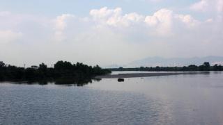 潮退時露出的泥灘聚集了不少雀鳥,遠望可看到深圳的樓房。