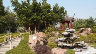 在山丘下拍攝疊翠亭,構圖更美。
