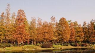 相片來源:U Travel Blog - CK仔。樂遊四方。