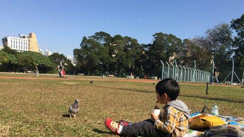 公園擁大片草地 (圖片來源:FB@魚子醬x鐵人家族親子平台)